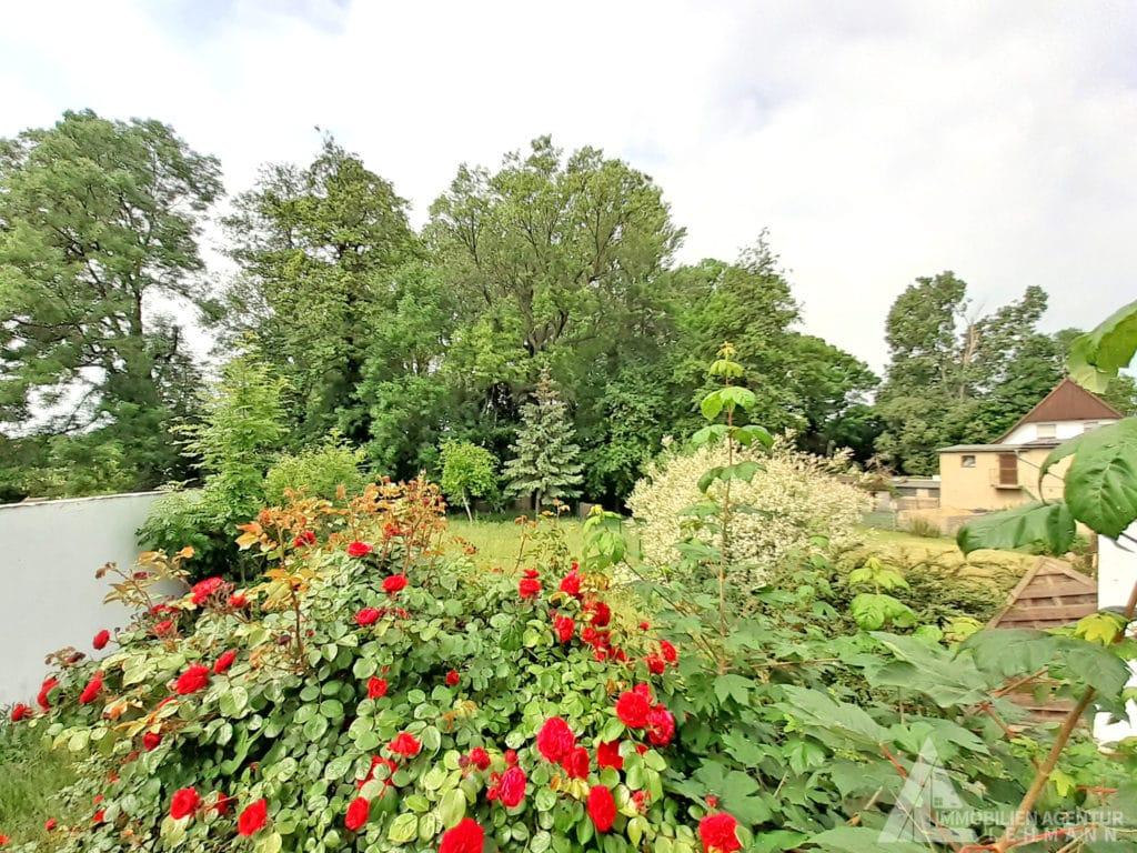 Garten-1-links